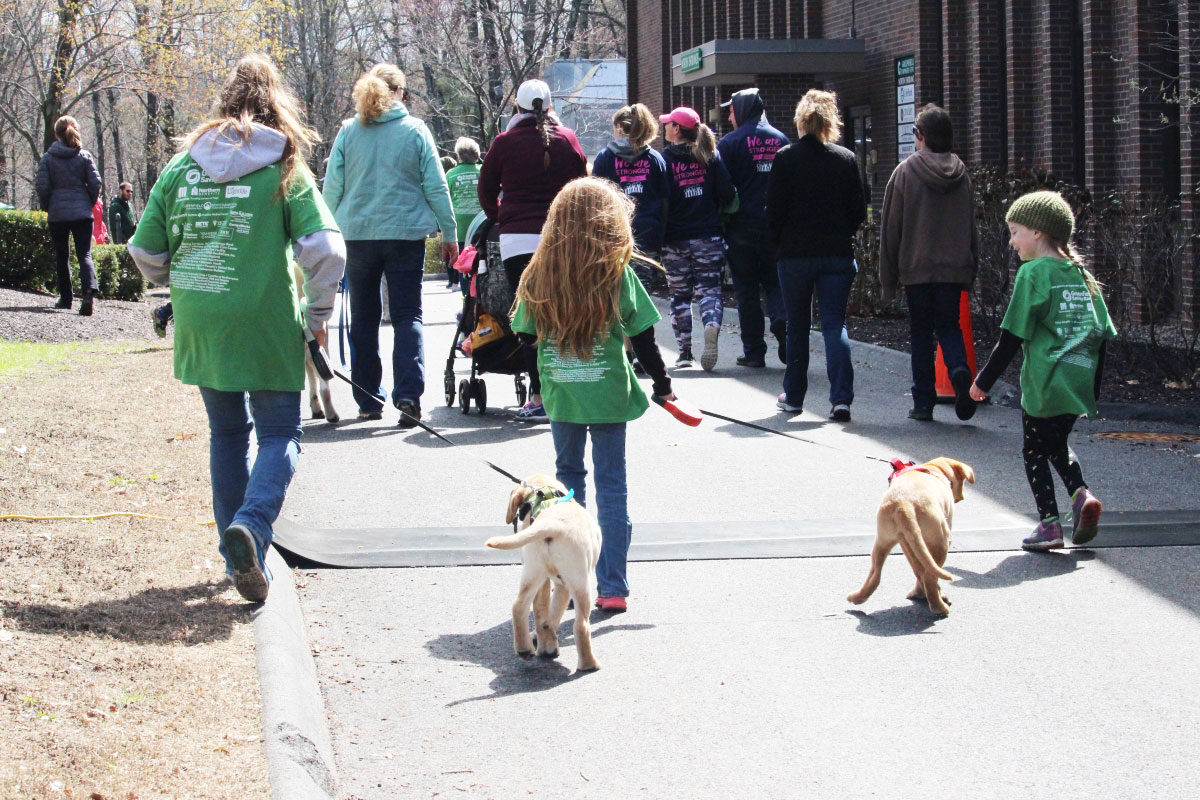 backs of walkathon walkers with puppies
